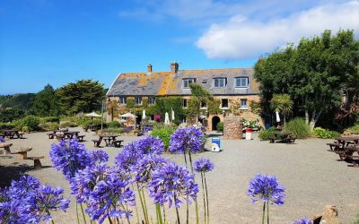 Top 5 Country Pubs in Jersey