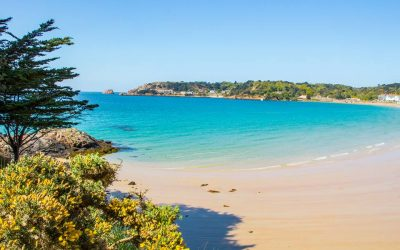 Remote Working from Jersey