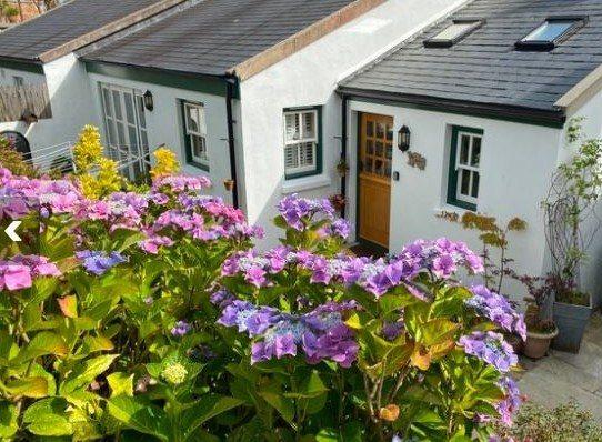 Annexe Cottage garden